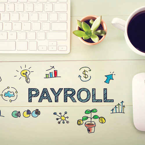 1.2.3. Consulting Payroll Services